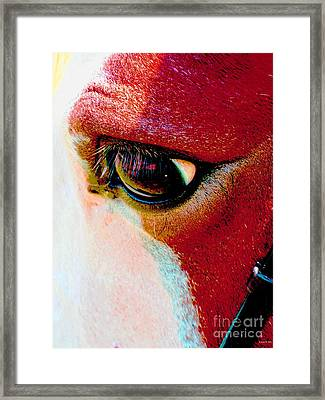 Within The Horse's Eyes Framed Print by Annie Zeno