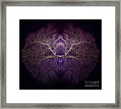 Within Framed Print by Tim Gainey