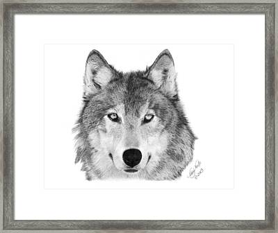 Wolf - 004 Framed Print by Abbey Noelle