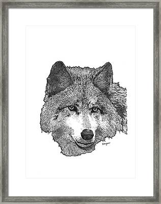 Wolf 1 Framed Print