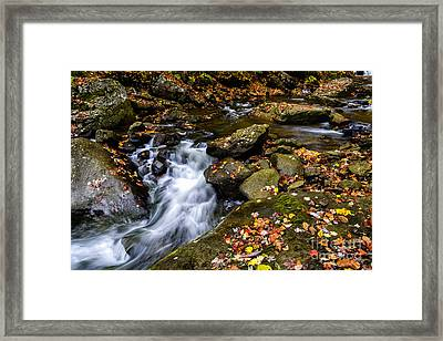 Wolf Creek New River Gorge Framed Print