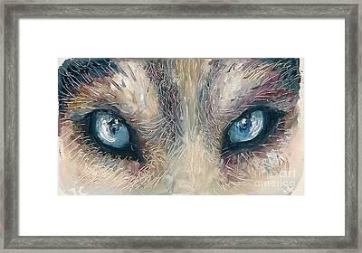 Wolf Framed Print by Donna Chaasadah