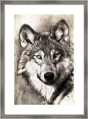 Wolf Framed Print by FL collection