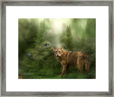 Wolf - Forest Spirit Framed Print by Carol Cavalaris