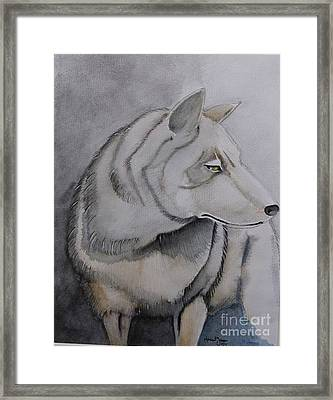 Wolf Framed Print by Grant Mansel-James