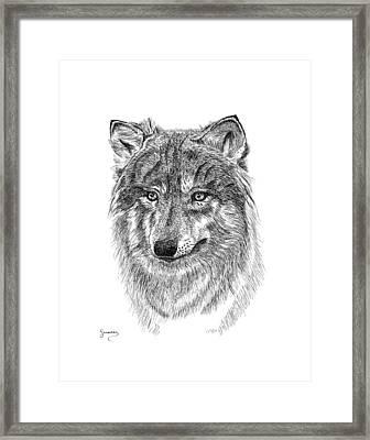 Wolf II Framed Print