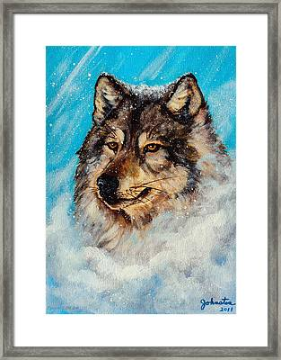 Wolf In A Snow Storm Framed Print by Bob and Nadine Johnston