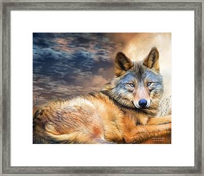 Wolf In Moonlight Framed Print by Carol Cavalaris