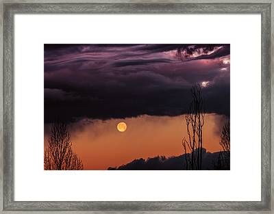 Wolf Moon Framed Print by Roger Chenery