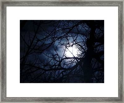 Wolf Moon  Framed Print by Wild Thing