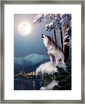 Wolf On The Doorstep Of Civilization  Framed Print by Regina Femrite