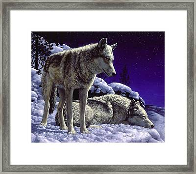 Wolf Painting - Night Watch Framed Print by Crista Forest
