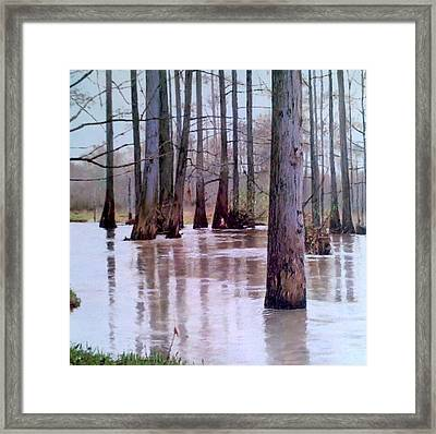 Wolf River Near Moscow Tennessee Framed Print by Mike DeWitt