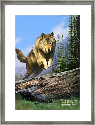 Wolf Run Framed Print