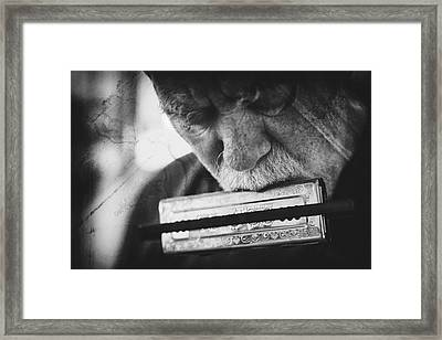 Wolf With Harmonica Framed Print