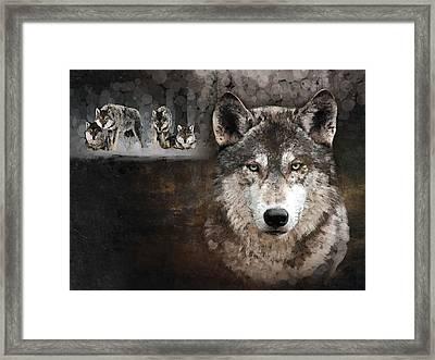 Wolf Gang Framed Print by Marina Likholat