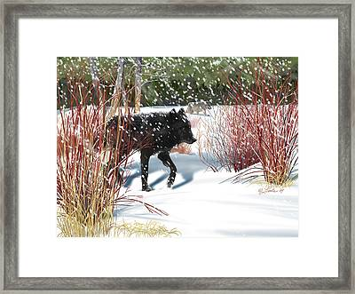Wolves In The Willows Framed Print