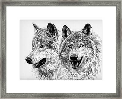 Wolves  Framed Print by Sheri Marean