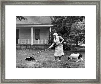 Woman Gently Moves A Skunk Framed Print by Underwood Archives