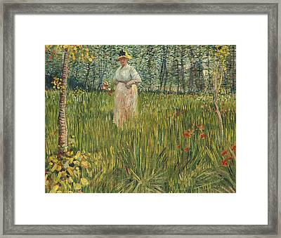 Woman In A Garden Framed Print by Vincent van Gogh