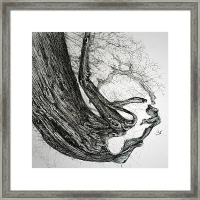 Woman Framed Print by Penny Collins