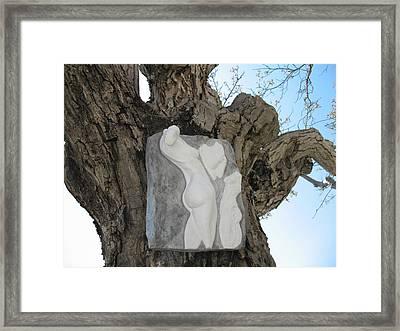 Woman Torso - Cast 1 Framed Print by Flow Fitzgerald