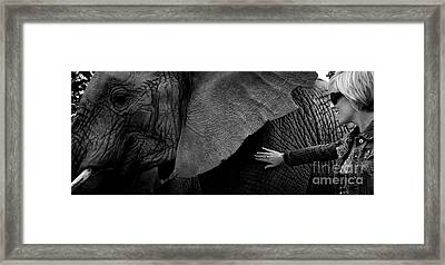 Woman Touching An Elephant Framed Print