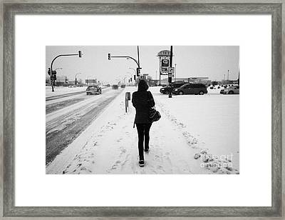 woman walking along 8th street in blizzard conditions Saskatoon Saskatchewan Canada Framed Print