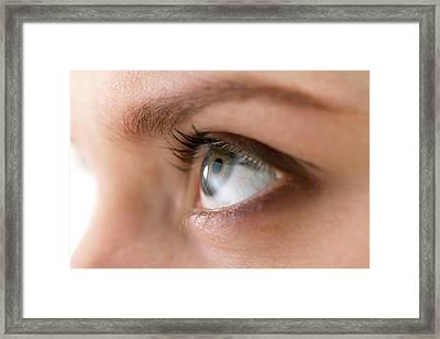 Woman's Eye Framed Print by Daniel Sambraus, Thomas Luddington