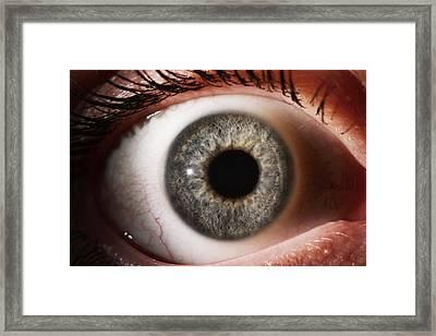 Woman's Eye Framed Print by Mcs