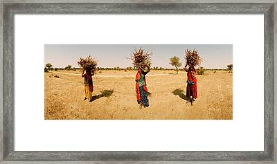 Women Carrying Firewood On Their Heads Framed Print