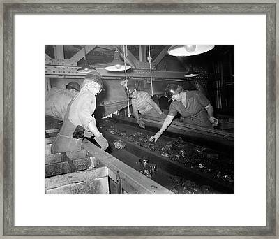 Women Pick Foreign Matter Out Of Coal Framed Print by Stocktrek Images