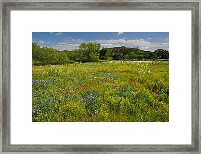 Wonder-filled Meadows Framed Print by Lynn Bauer
