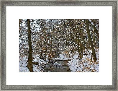 Wonder Land Framed Print