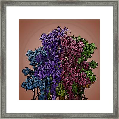 Wonderful Colors 1 Framed Print by Pepita Selles