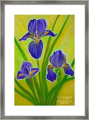 Wonderful Iris Flowers 3 Framed Print