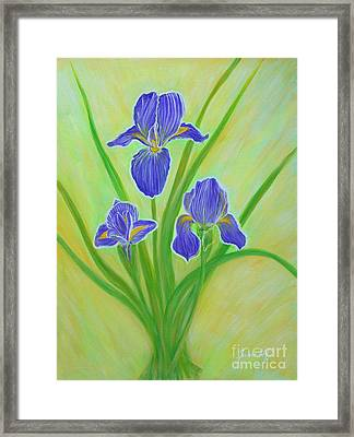 Wonderful Iris Flowers. Inspirations Collection. Framed Print