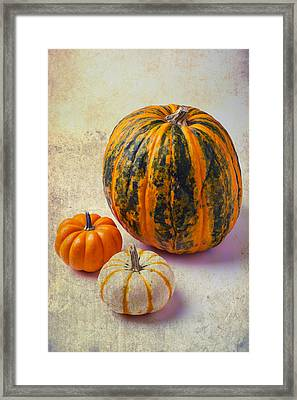 Wonderful Pumpkins Framed Print
