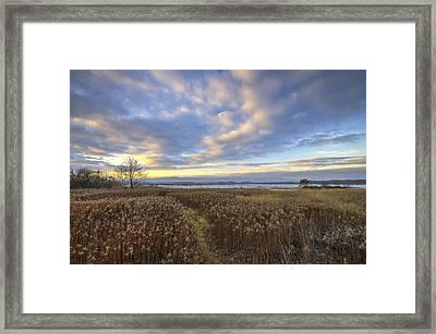Wonderful Sunset Framed Print