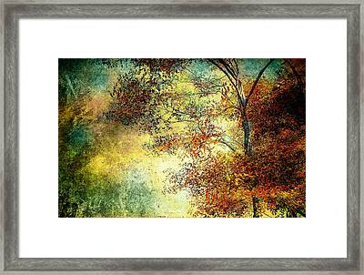Wondering Framed Print by Bob Orsillo