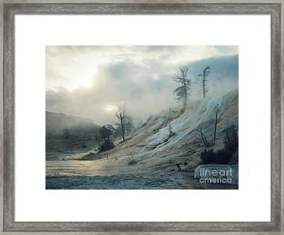 Framed Print featuring the photograph Wonderland by Irina Hays