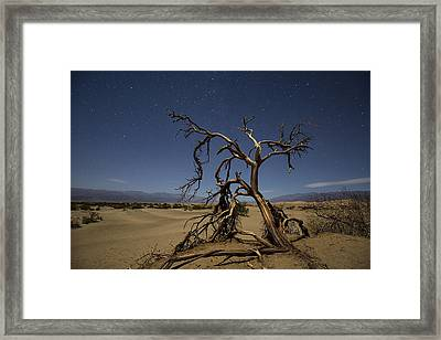 Framed Print featuring the photograph Wonderland  by Patrick Downey