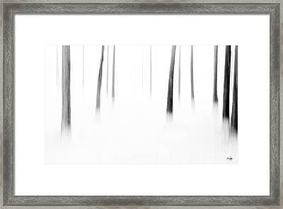 Wonderland Framed Print by Scott Pellegrin
