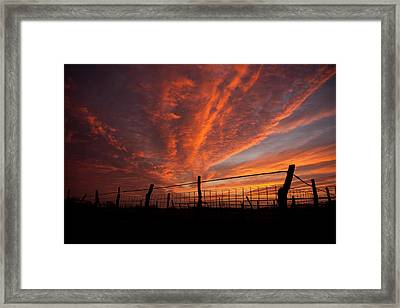 Wonderous Sky Framed Print by Shirley Heier