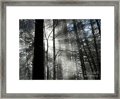 Wondrous Light Framed Print by Avis  Noelle
