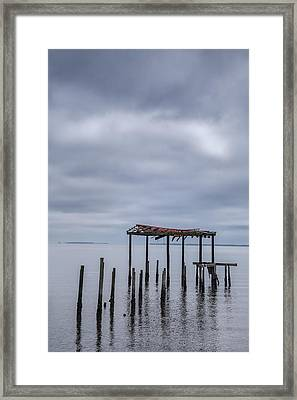 Won't Let Go Framed Print by Jon Glaser