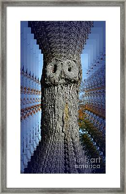 Woo Tree Framed Print
