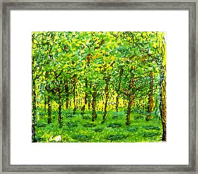 Wood Between The Worlds Framed Print
