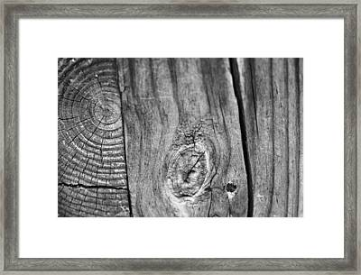 Wood Black And White Framed Print by Dan Sproul