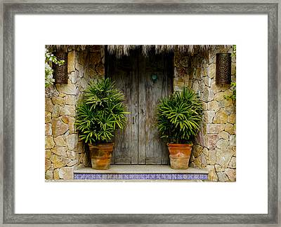 Wood Door Framed Print by Aged Pixel